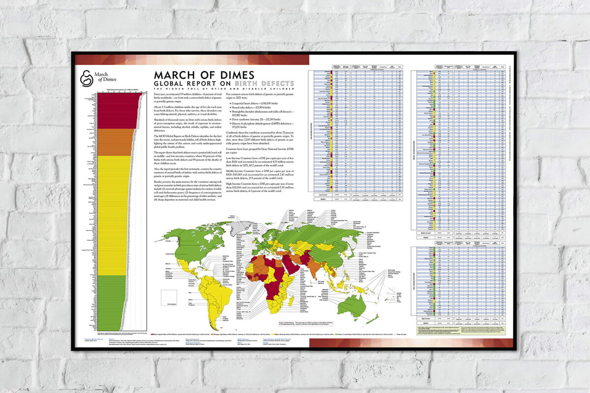 March of Dimes Global Report on Birth Defects - Wall Chart